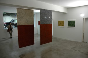 冨田潤 TEXTURED COLOR 展
