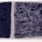 P.Kasuri No.49